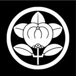 井伊直虎(おとわ)の経歴と直親(亀之丞)や直政との関係について!